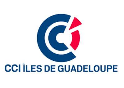 Forum-pro-jeunesse-formation-cci-des-iles-de-guadeloupe-logo-guadeloupe-stage-alternance