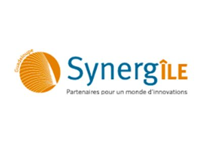 Forum-pro-jeunesse-recrutement-synergiles-logo-guadeloupe-stage-alternance