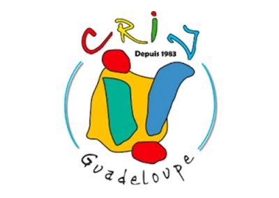 crij-guadeloupe-Forum-pro-jeunesse-logo-stage-alternance
